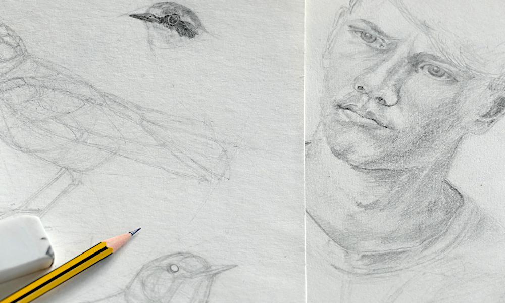 Zeichenschule Bleistiftzeichnung